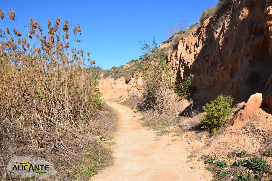 carrizales-ruta-rio-seco4