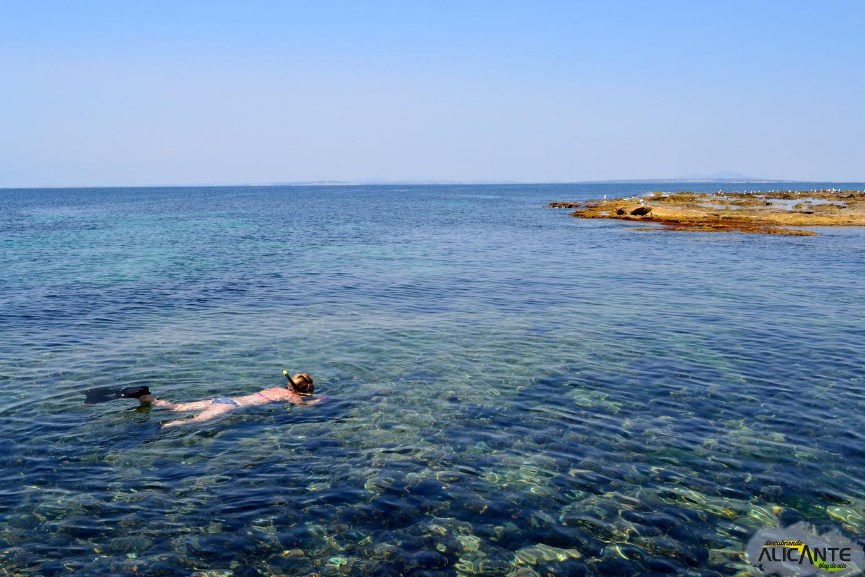 calas-para-hacer-snorkel-en-tabarca-alicante