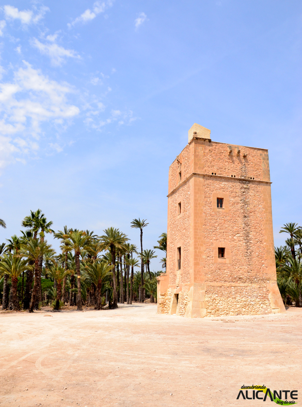 torre-vaillo-palmeral-de-elche