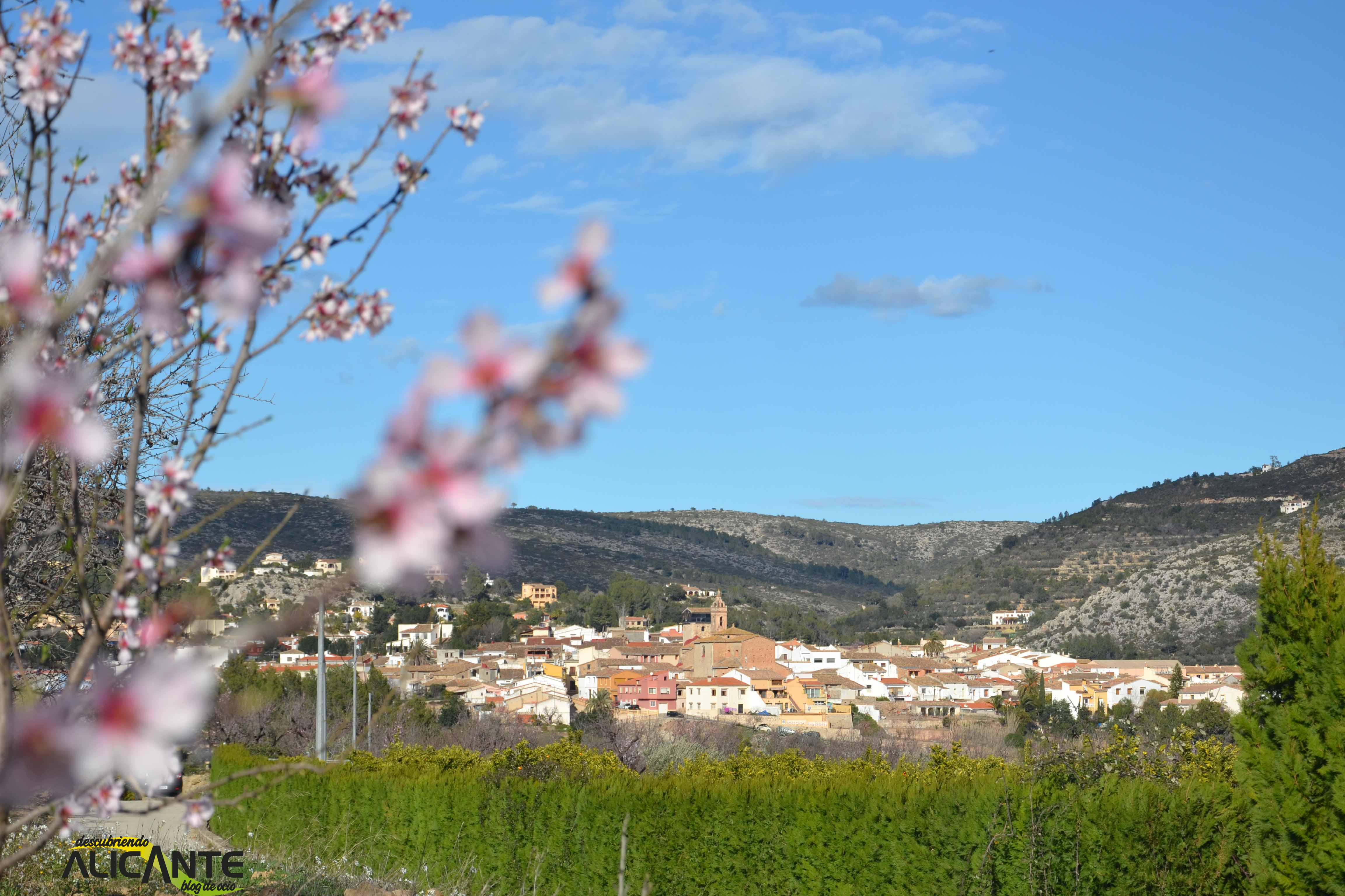 7-alcalali-almendros-en-flor