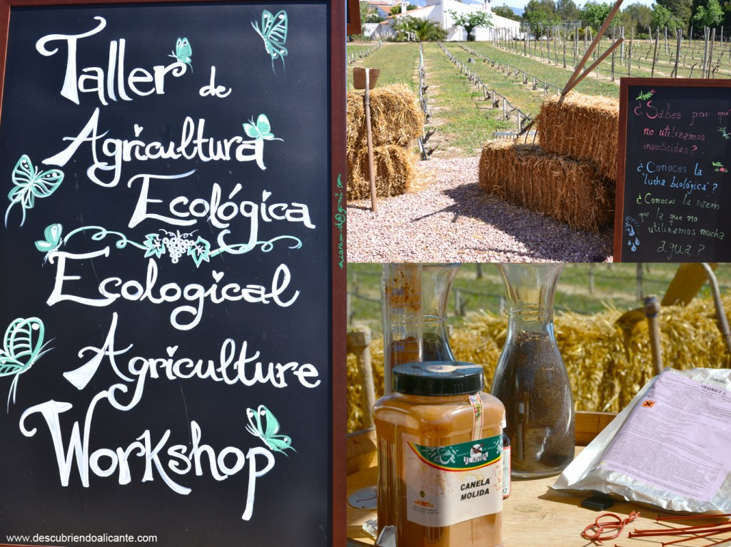 50-enoescapada-enrique-mendoza-alfas-taller-agricultura-ecologica