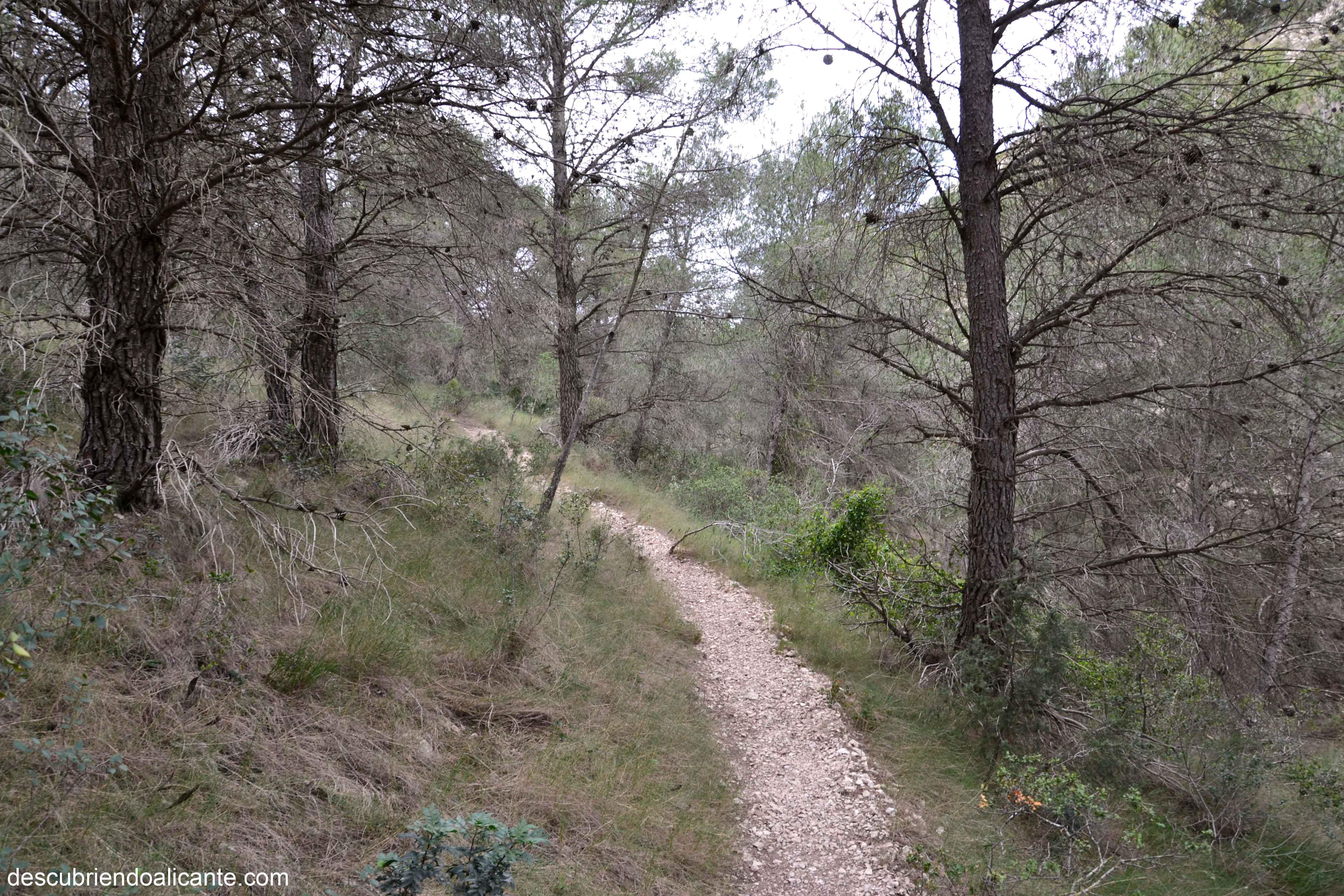 ruta-a-la-vella-sierra-de-crevillente