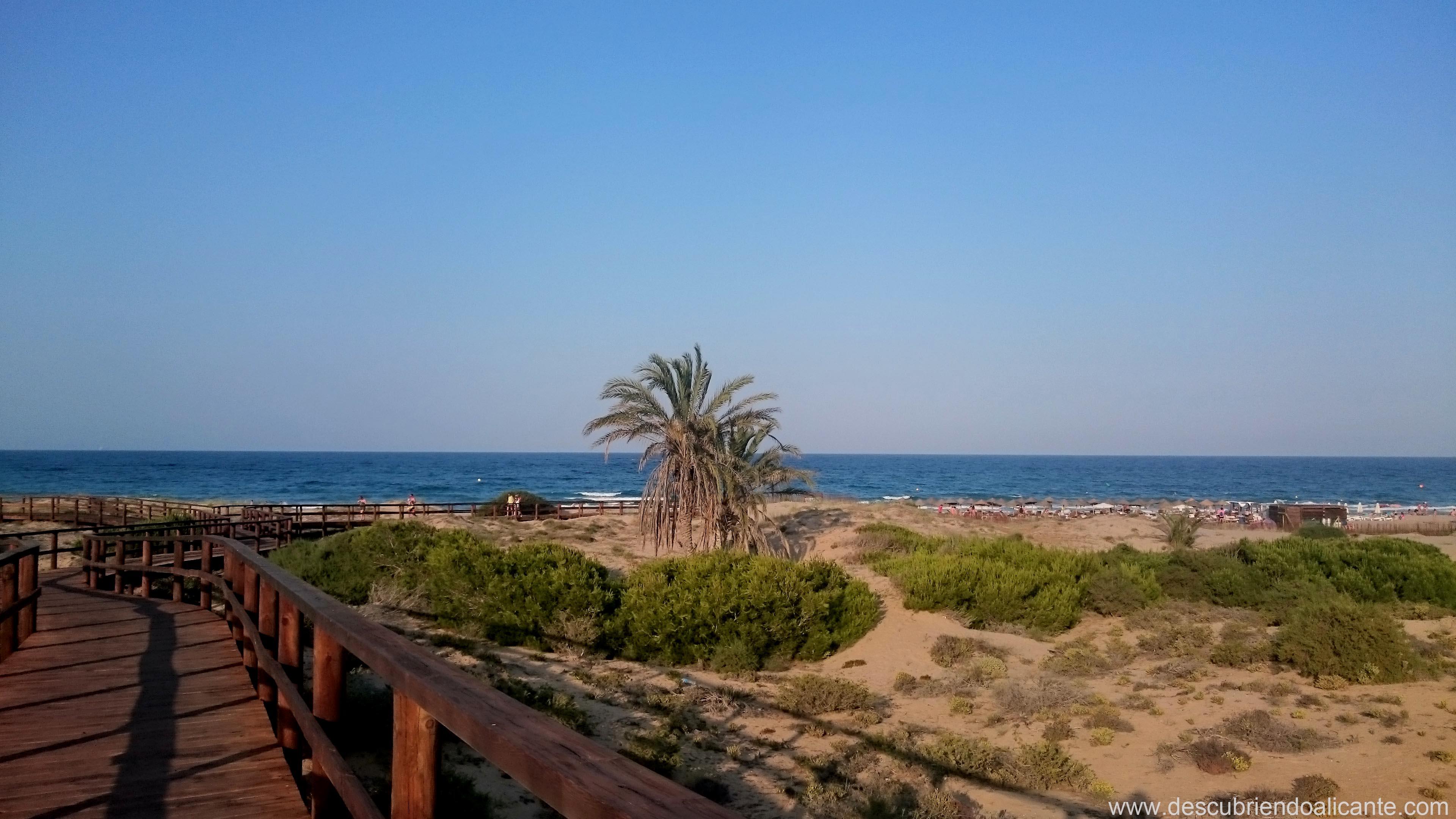 pasarela-de-madera-playa-arenales-elche-2