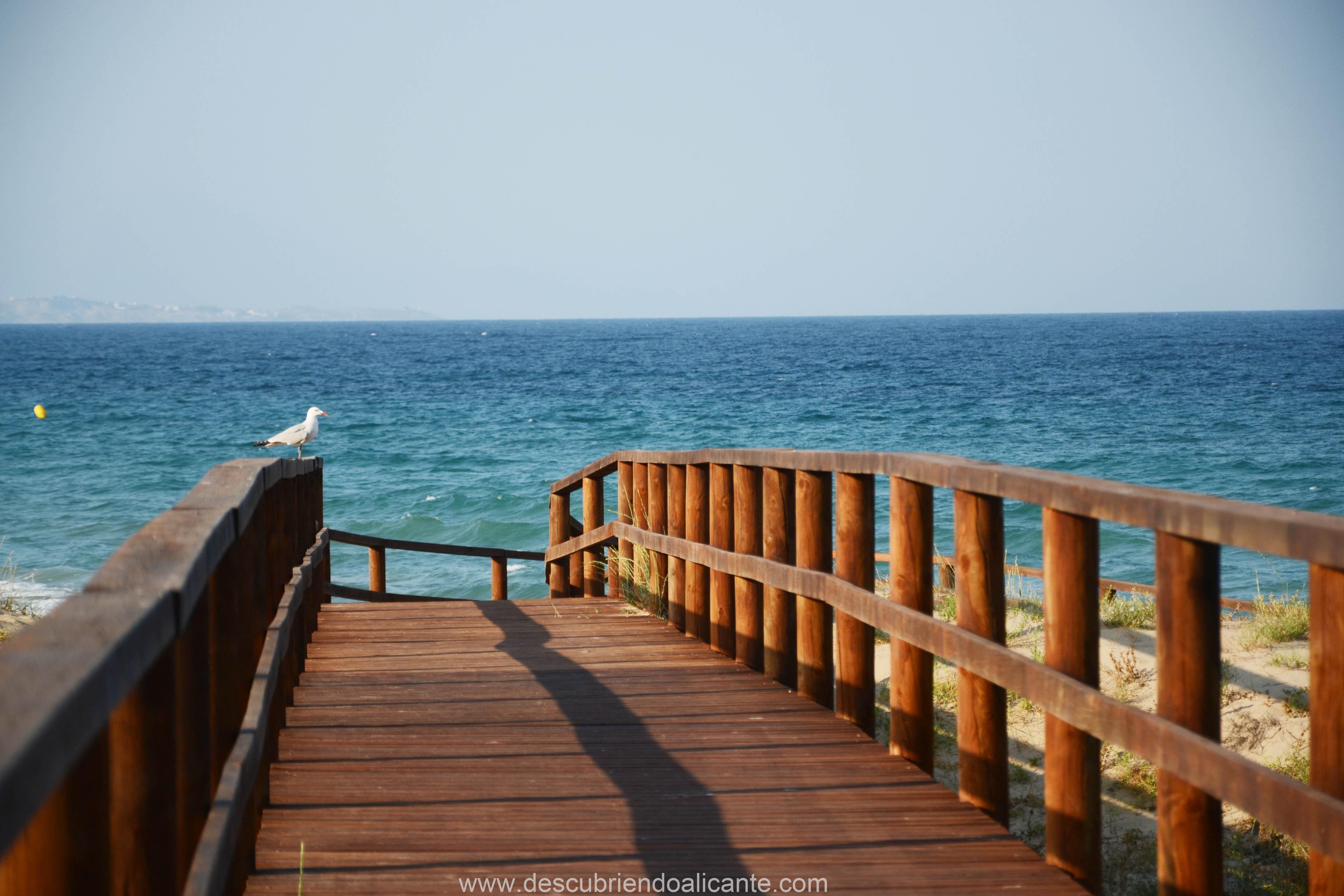 pasarela-de-madera-playa-arenales-elche