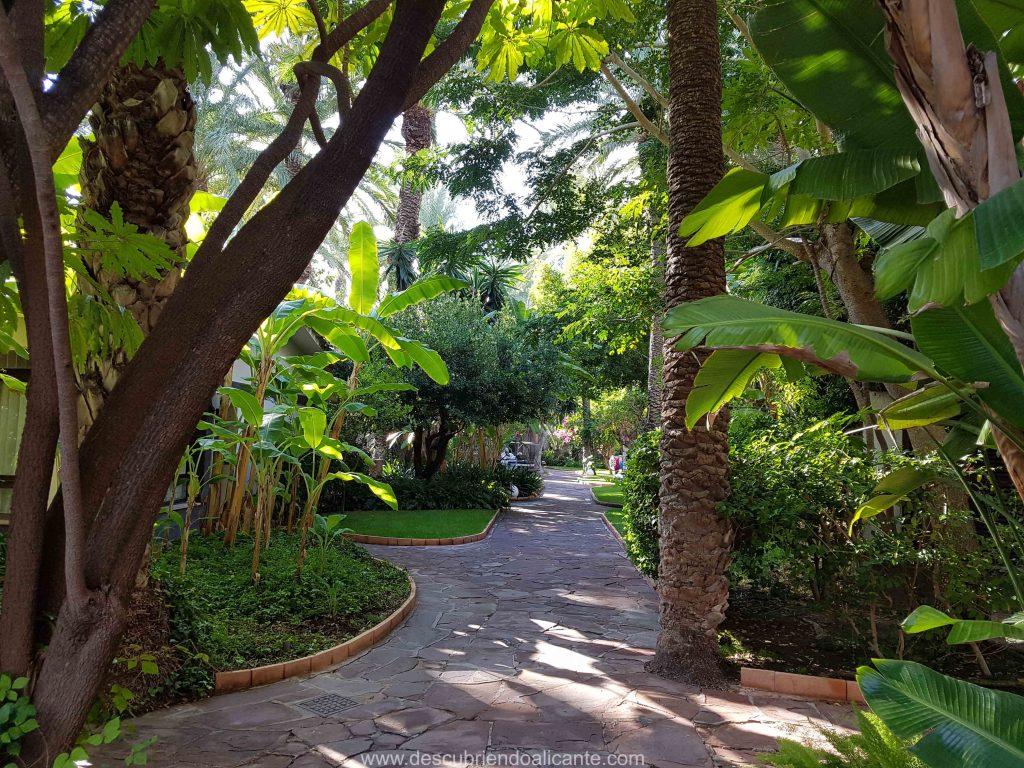 Jardin y zonas comunes hotel huerto del cura Elche