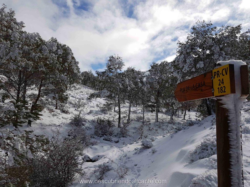 La Serrella nevada, Pla de la Casa, Facheca